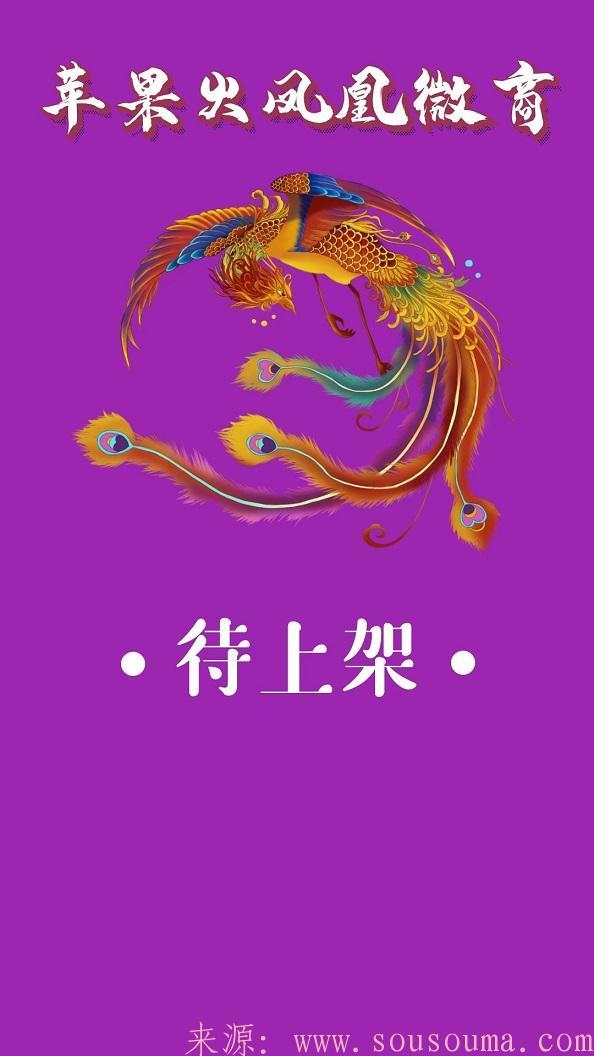【苹果火凤凰微商】高端防封版本苹果多开分身群发加人激活码授权